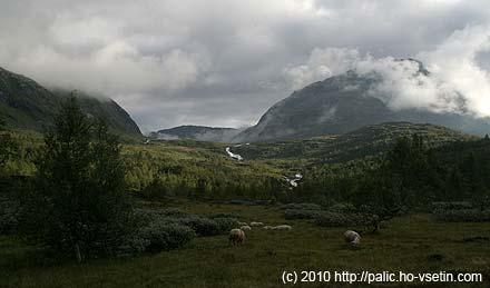 Směr údolí Vetleutladalen k chatě Krossbu z našeho tábořiště - ovce si z nás nic nedělaly